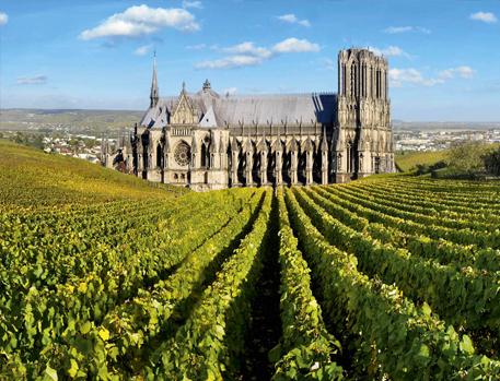 Champagne, Reims